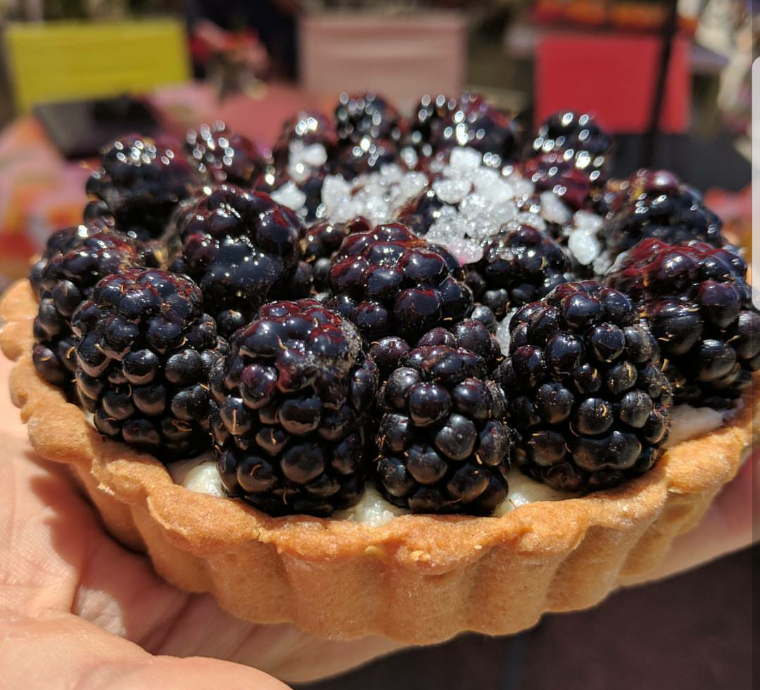 Tarts | Petite Astorias, Escondido, San Diego County, California